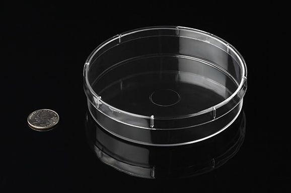 Runde Petrischale aus Kunststoff, 11,9cm x 2,5cm