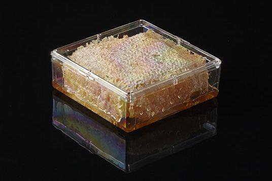 Pioneer Plastics - hochwertige, lebensmittelechte Kunststoffbox für Honigwaben, quadratisch
